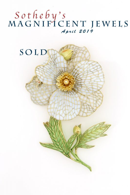 Matilija Poppy Sold at Sotheby's NY